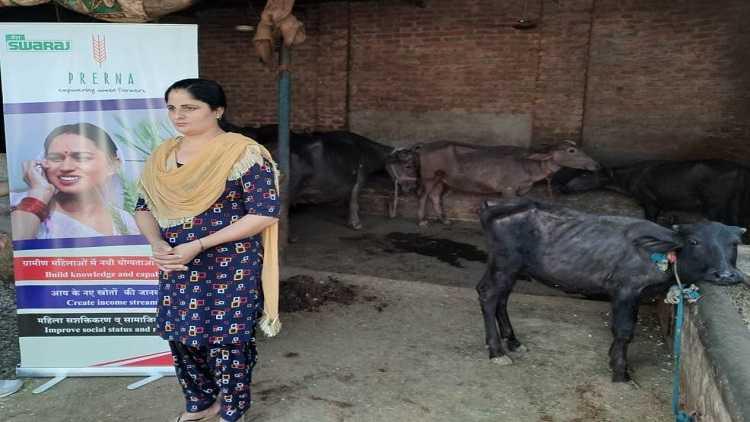 Dairy farm owner Baljinder Kaur